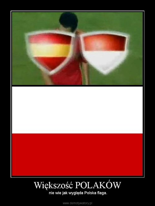Większość POLAKÓW
