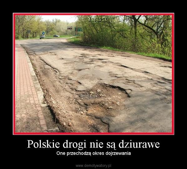 Polskie drogi nie są dziurawe – One przechodzą okres dojrzewania