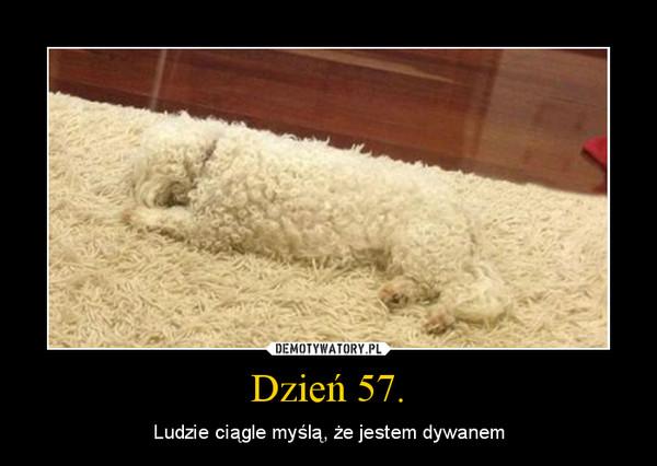 Dzień 57. – Ludzie ciągle myślą, że jestem dywanem