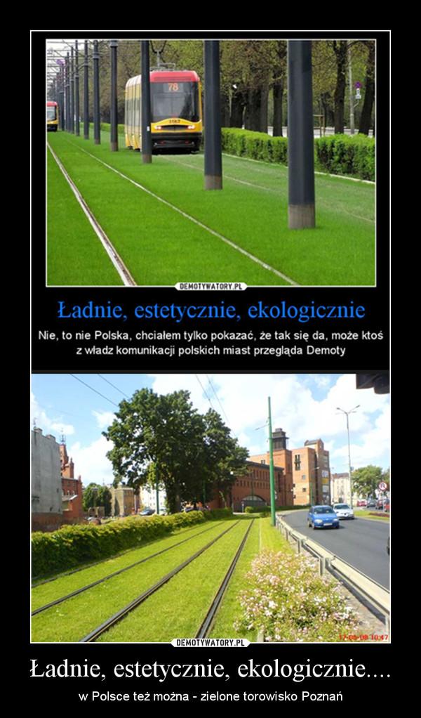 Ładnie, estetycznie, ekologicznie.... – w Polsce też można - zielone torowisko Poznań