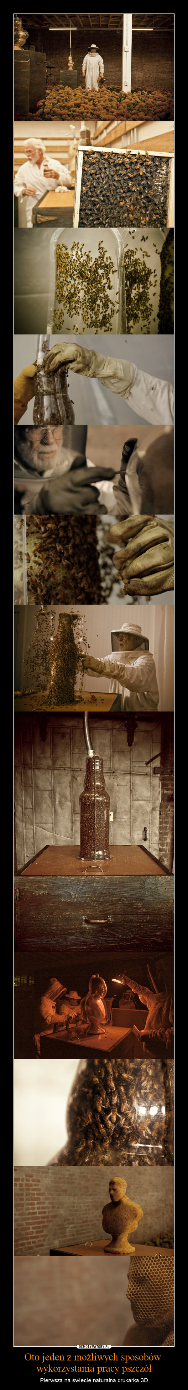 Oto jeden z możliwych sposobów wykorzystania pracy pszczół – Pierwsza na świecie naturalna drukarka 3D