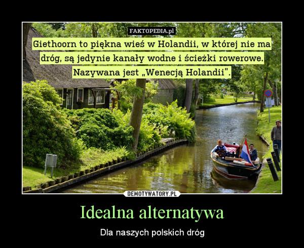 Idealna alternatywa – Dla naszych polskich dróg
