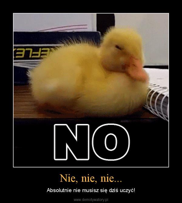 Nie, nie, nie... – Absolutnie nie musisz się dziś uczyć!