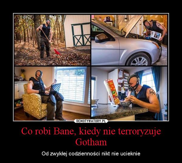Co robi Bane, kiedy nie terroryzuje Gotham – Od zwykłej codzienności nikt nie ucieknie