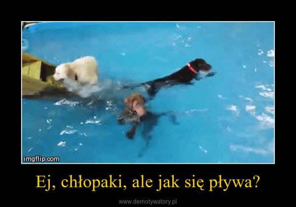 Ej, chłopaki, ale jak się pływa? –