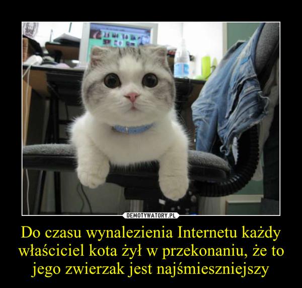 Do czasu wynalezienia Internetu każdy właściciel kota żył w przekonaniu, że to jego zwierzak jest najśmieszniejszy –
