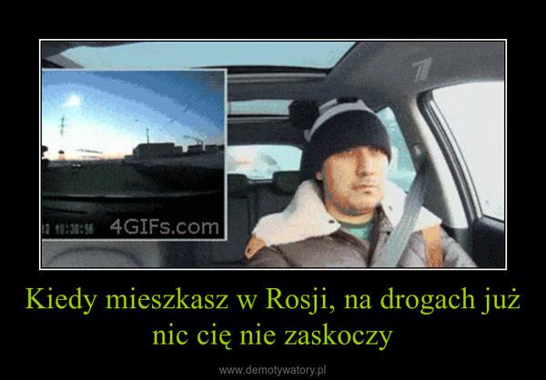 Kiedy mieszkasz w Rosji, na drogach już nic cię nie zaskoczy –