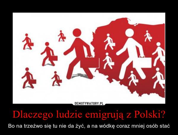 Dlaczego ludzie emigrują z Polski? – Bo na trzeźwo się tu nie da żyć, a na wódkę coraz mniej osób stać