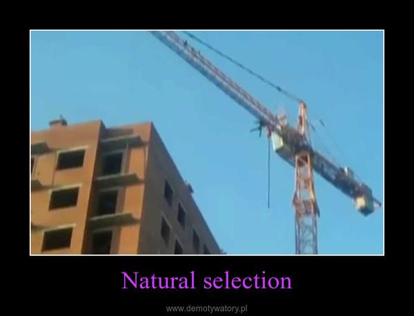 Natural selection –