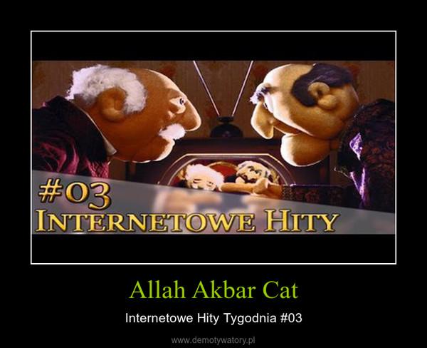 Allah Akbar Cat – Internetowe Hity Tygodnia #03