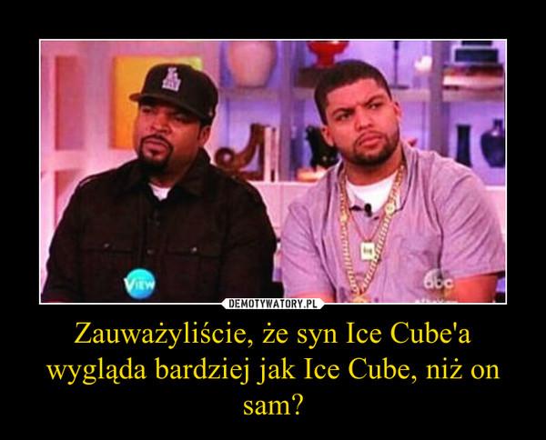 Zauważyliście, że syn Ice Cube'a wygląda bardziej jak Ice Cube, niż on sam? –