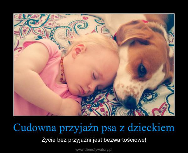 Cudowna przyjaźn psa z dzieckiem – Życie bez przyjaźni jest bezwartościowe!