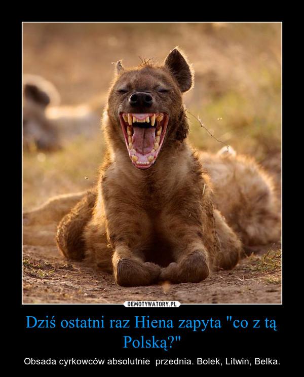 """Dziś ostatni raz Hiena zapyta """"co z tą Polską?"""" – Obsada cyrkowców absolutnie  przednia. Bolek, Litwin, Belka."""