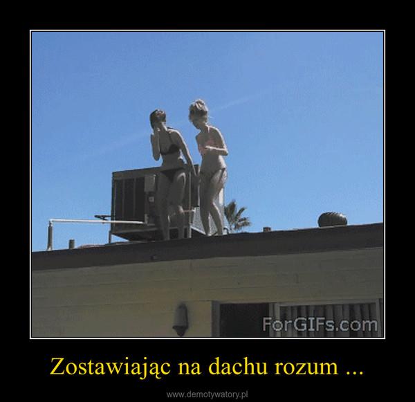 Zostawiając na dachu rozum ... –