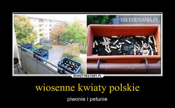 wiosenne kwiaty polskie – piwonie i petunie