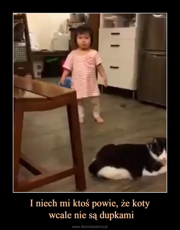 I niech mi ktoś powie, że koty wcale nie są dupkami –