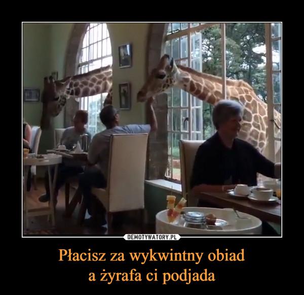 Płacisz za wykwintny obiada żyrafa ci podjada –