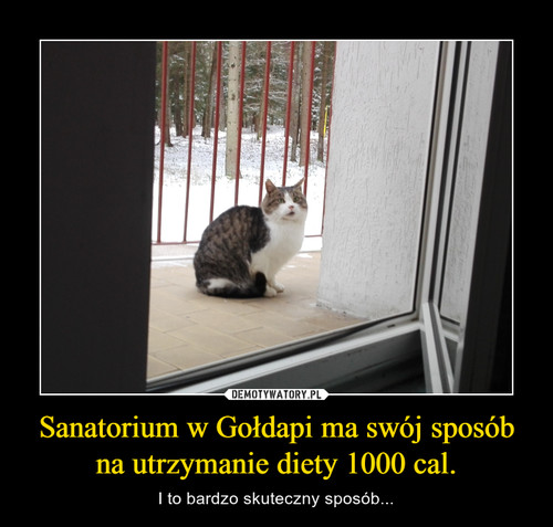 Sanatorium w Gołdapi ma swój sposób na utrzymanie diety 1000 cal.