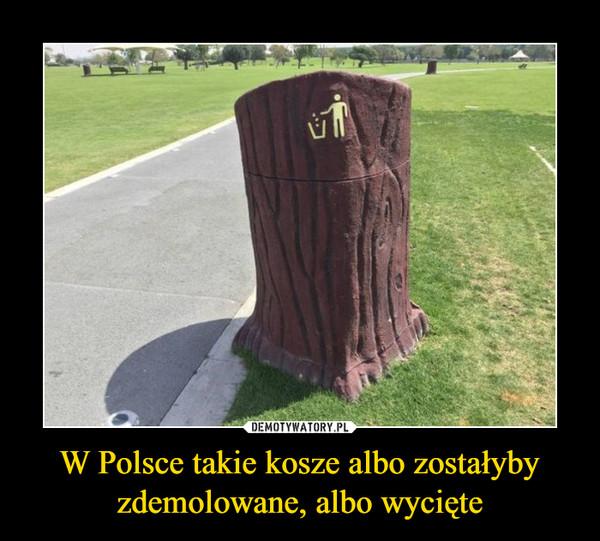 W Polsce takie kosze albo zostałyby zdemolowane, albo wycięte –