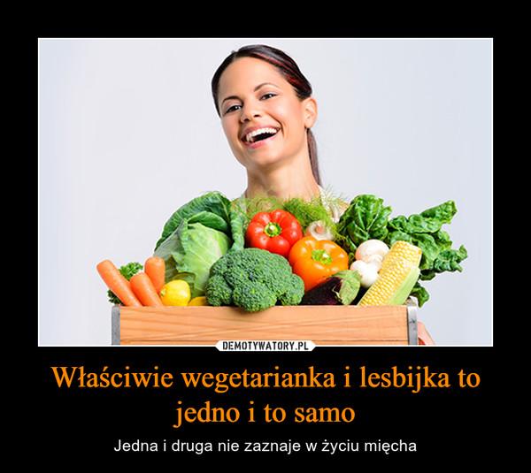 Właściwie wegetarianka i lesbijka to jedno i to samo – Jedna i druga nie zaznaje w życiu mięcha