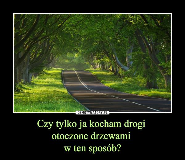 Czy tylko ja kocham drogi otoczone drzewami w ten sposób? –