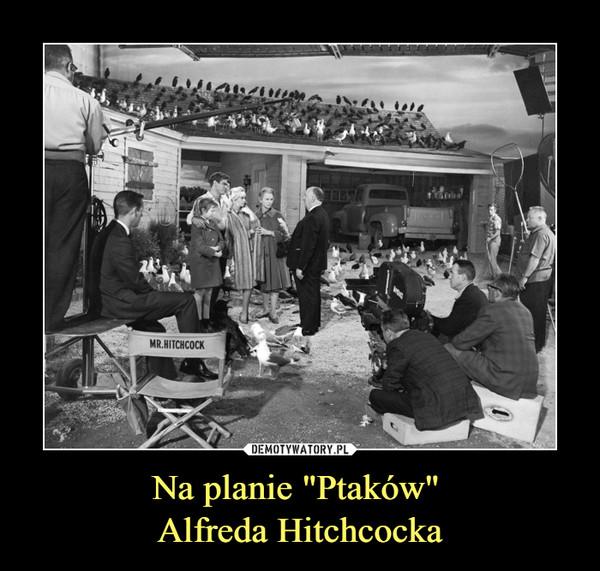 """Na planie """"Ptaków"""" Alfreda Hitchcocka –"""
