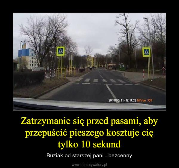 Zatrzymanie się przed pasami, aby przepuścić pieszego kosztuje ciętylko 10 sekund – Buziak od starszej pani - bezcenny