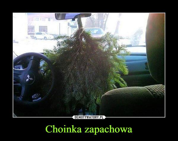 Choinka zapachowa –