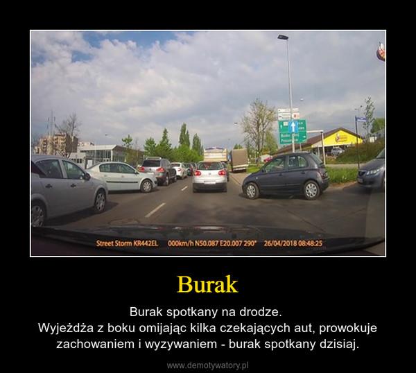 Burak – Burak spotkany na drodze. Wyjeżdża z boku omijając kilka czekających aut, prowokuje zachowaniem i wyzywaniem - burak spotkany dzisiaj.