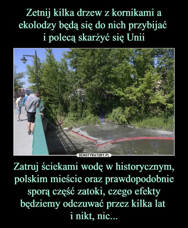 Zatruj ściekami wodę w historycznym, polskim mieście oraz prawdopodobnie sporą część zatoki, czego efekty będziemy odczuwać przez kilka lat i nikt, nic... –