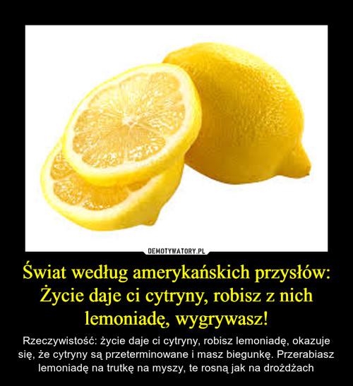 Świat według amerykańskich przysłów: Życie daje ci cytryny, robisz z nich lemoniadę, wygrywasz!