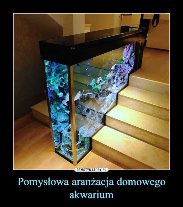 Pomysłowa aranżacja domowego akwarium –