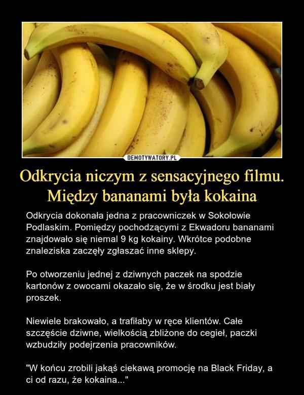 """Odkrycia niczym z sensacyjnego filmu. Między bananami była kokaina – Odkrycia dokonała jedna z pracowniczek w Sokołowie Podlaskim. Pomiędzy pochodzącymi z Ekwadoru bananami znajdowało się niemal 9 kg kokainy. Wkrótce podobne znaleziska zaczęły zgłaszać inne sklepy.Po otworzeniu jednej z dziwnych paczek na spodzie kartonów z owocami okazało się, że w środku jest biały proszek.Niewiele brakowało, a trafiłaby w ręce klientów. Całe szczęście dziwne, wielkością zbliżone do cegieł, paczki wzbudziły podejrzenia pracowników.""""W końcu zrobili jakąś ciekawą promocję na Black Friday, a ci od razu, że kokaina..."""""""