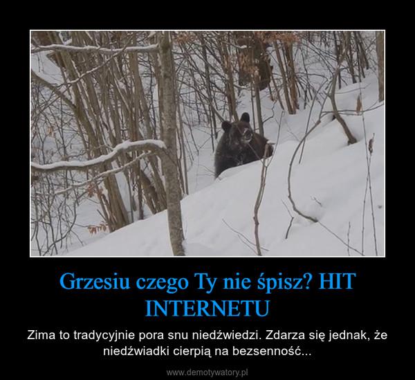 Grzesiu czego Ty nie śpisz? HIT INTERNETU – Zima to tradycyjnie pora snu niedźwiedzi. Zdarza się jednak, że niedźwiadki cierpią na bezsenność...