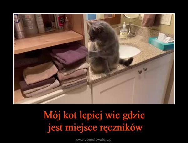 Mój kot lepiej wie gdzie jest miejsce ręczników –