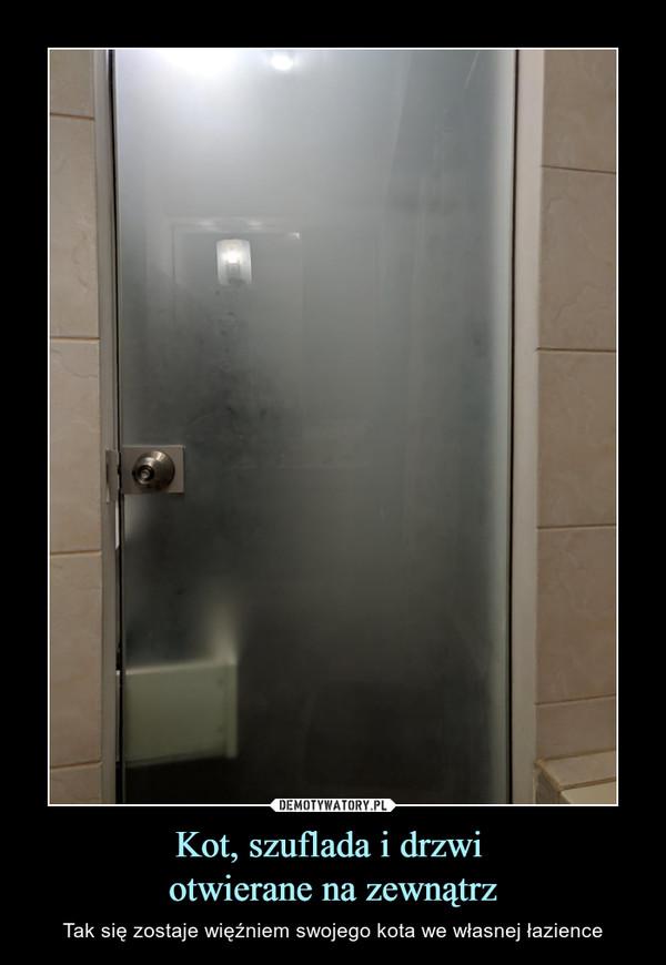 Kot, szuflada i drzwi otwierane na zewnątrz – Tak się zostaje więźniem swojego kota we własnej łazience