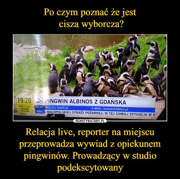 Relacja live, reporter na miejscu przeprowadza wywiad z opiekunem pingwinów. Prowadzący w studio podekscytowany –