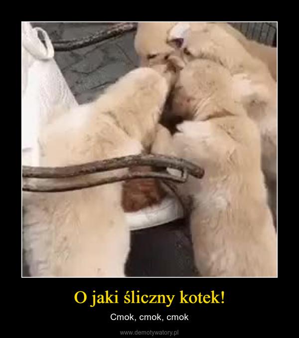 O jaki śliczny kotek! – Cmok, cmok, cmok