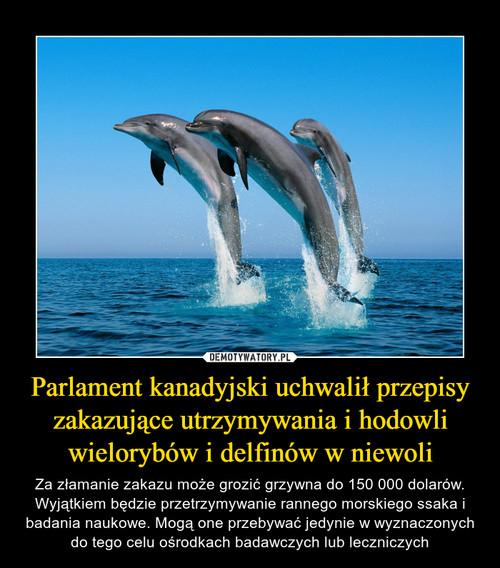 Parlament kanadyjski uchwalił przepisy zakazujące utrzymywania i hodowli wielorybów i delfinów w niewoli