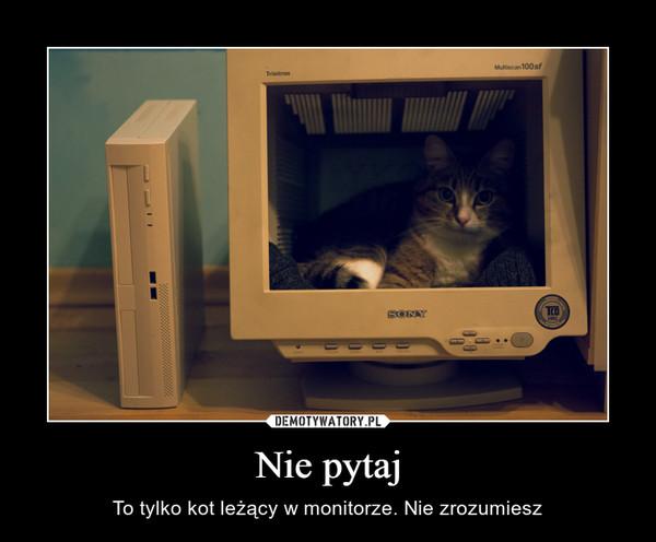Nie pytaj – To tylko kot leżący w monitorze. Nie zrozumiesz