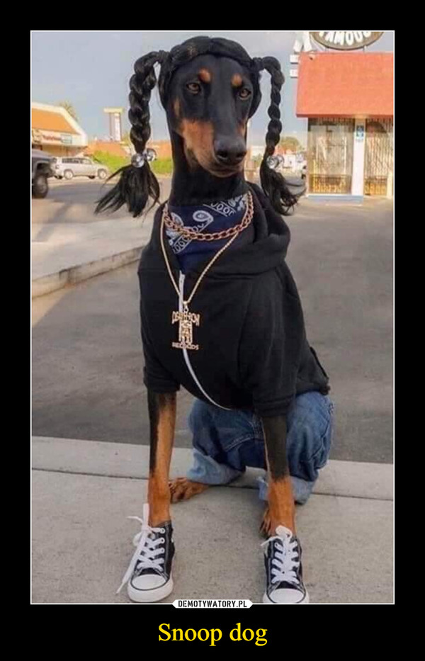 Snoop dog –