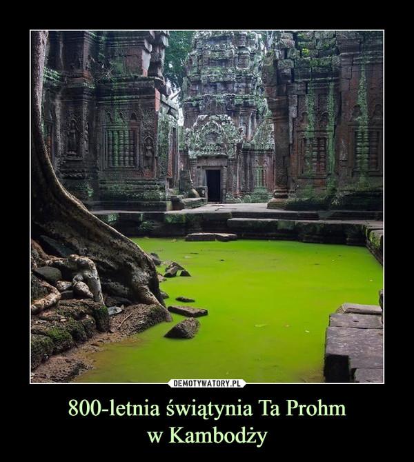800-letnia świątynia Ta Prohmw Kambodży –