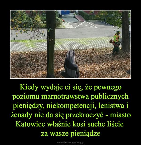 Kiedy wydaje ci się, że pewnego poziomu marnotrawstwa publicznych pieniędzy, niekompetencji, lenistwa i żenady nie da się przekroczyć - miasto Katowice właśnie kosi suche liście za wasze pieniądze –