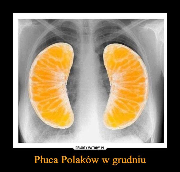 Płuca Polaków w grudniu –