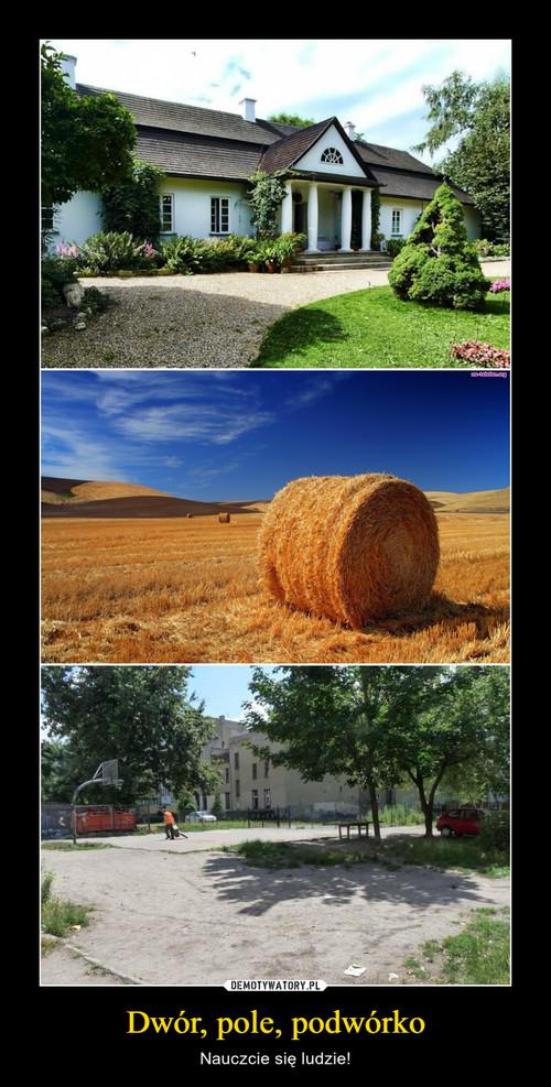 Dwór, pole, podwórko