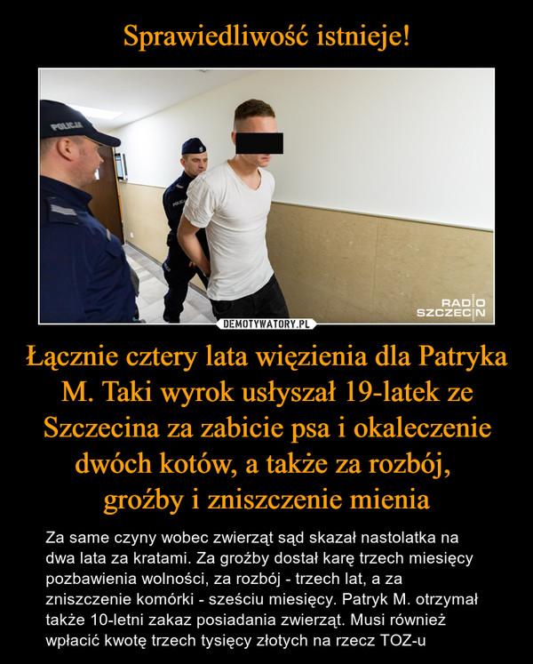 Łącznie cztery lata więzienia dla Patryka M. Taki wyrok usłyszał 19-latek ze Szczecina za zabicie psa i okaleczenie dwóch kotów, a także za rozbój, groźby i zniszczenie mienia – Za same czyny wobec zwierząt sąd skazał nastolatka na dwa lata za kratami. Za groźby dostał karę trzech miesięcy pozbawienia wolności, za rozbój - trzech lat, a za zniszczenie komórki - sześciu miesięcy. Patryk M. otrzymał także 10-letni zakaz posiadania zwierząt. Musi również wpłacić kwotę trzech tysięcy złotych na rzecz TOZ-u