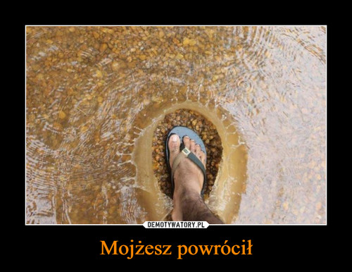 Mojżesz powrócił