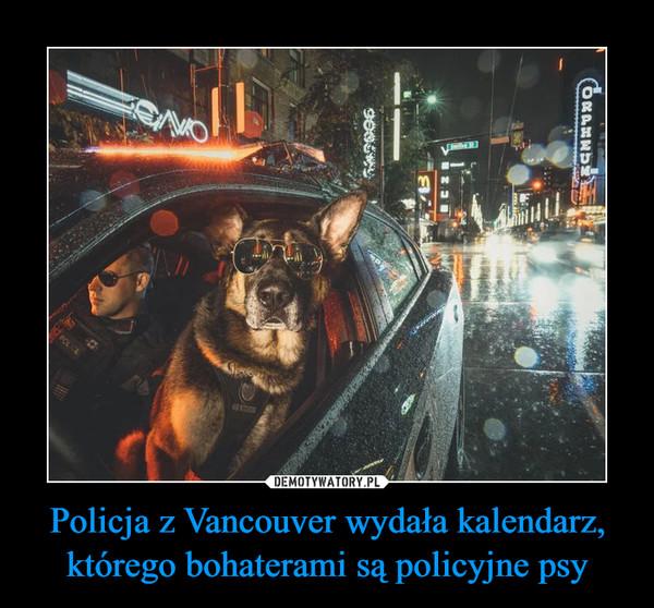 Policja z Vancouver wydała kalendarz, którego bohaterami są policyjne psy –