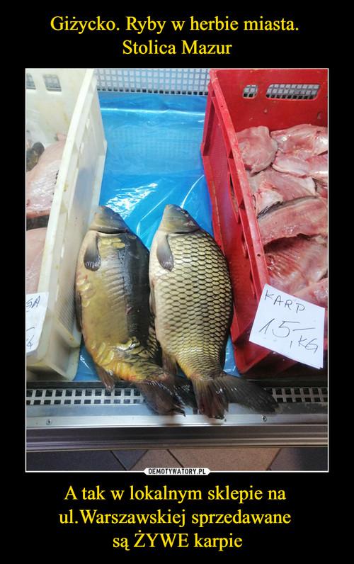 Giżycko. Ryby w herbie miasta.  Stolica Mazur A tak w lokalnym sklepie na  ul.Warszawskiej sprzedawane  są ŻYWE karpie