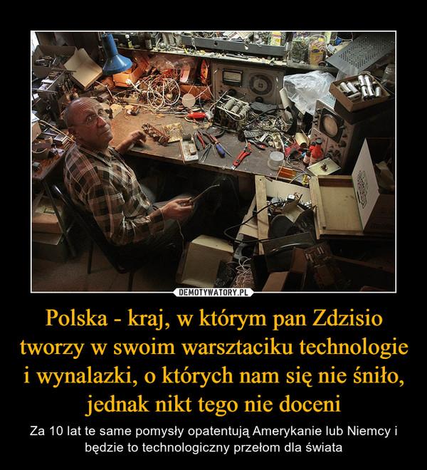 Polska - kraj, w którym pan Zdzisio tworzy w swoim warsztaciku technologie i wynalazki, o których nam się nie śniło, jednak nikt tego nie doceni – Za 10 lat te same pomysły opatentują Amerykanie lub Niemcy i będzie to technologiczny przełom dla świata